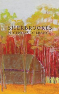 Sherbrookes-Possession-Sherbrookes-Stillness-American-Literature-Series-0